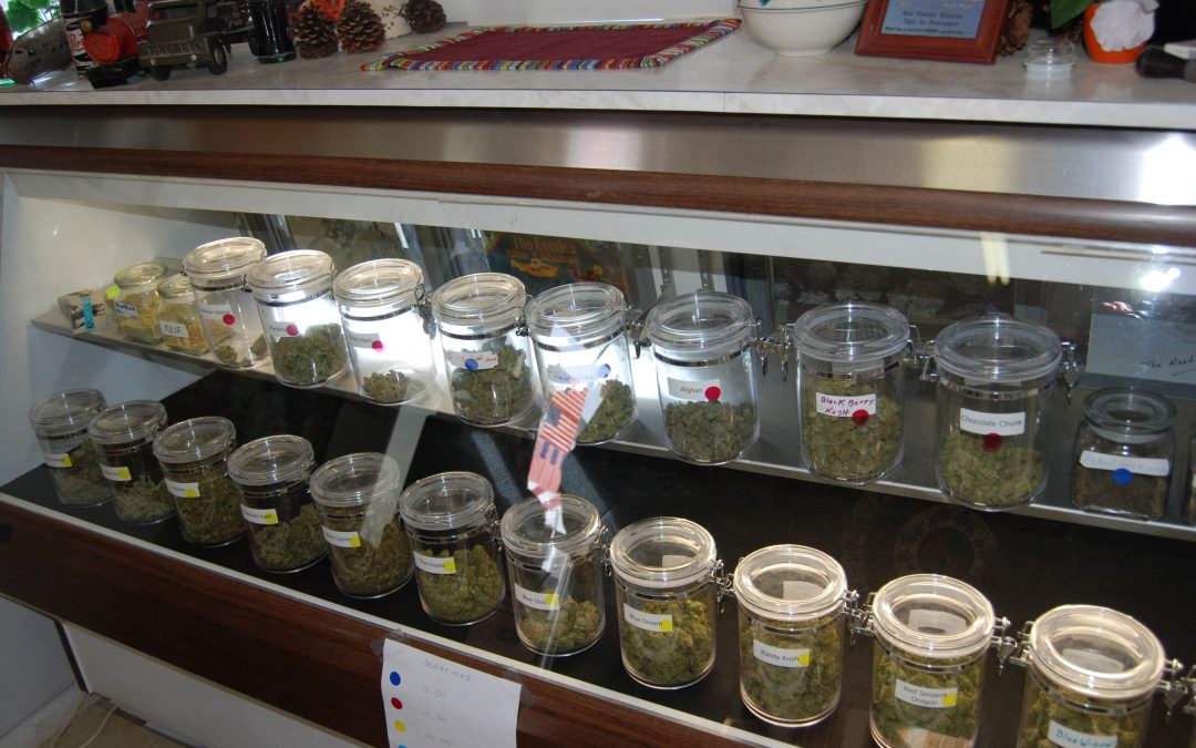 Marijuana dispensary applications