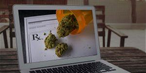 Marijuana courses online