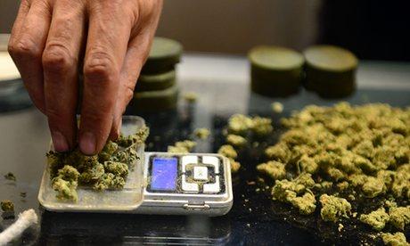 Marijuana business license