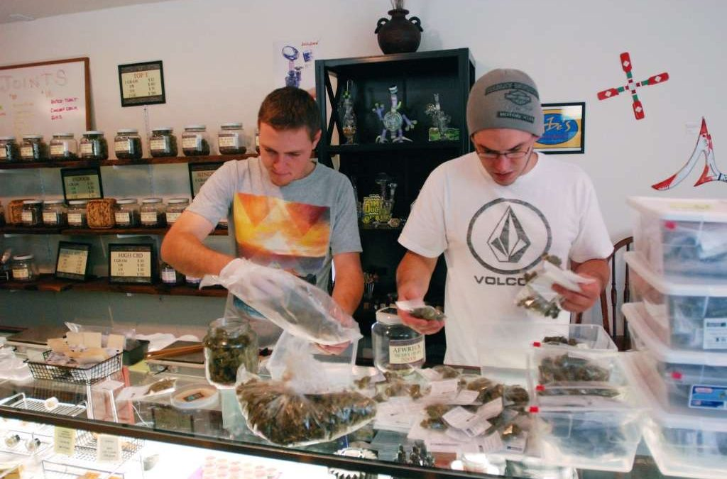 Who can apply for dispensary business permits?